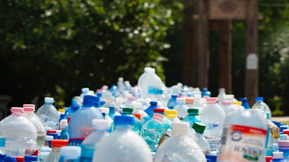 An image showing plastic bottles not free from BPA